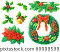 크리스마스 식물 일러스트 세트 60099599