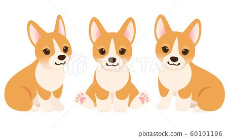柯基犬圖片小狗全身插圖集 60101196