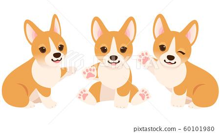 손을 올리는 코기 강아지들의 일러스트 세트 60101980