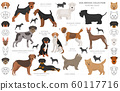 Hunting dogs collection isolated on white clipart. 60117716