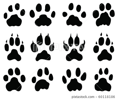 trace, paw, track 60118186