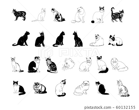 cat collection clipart 60132155