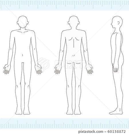 男性医学美女裸体裸体正面,背面,侧面 60138872
