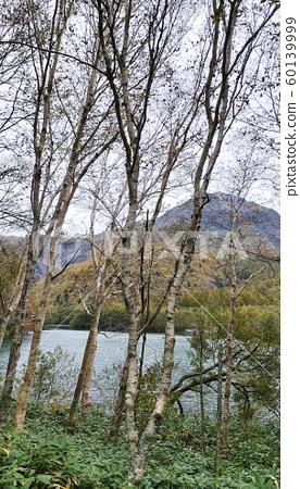 上高地長野國立公園秋景 60139999