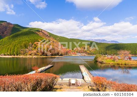 湖泊 湖 景色 60150304