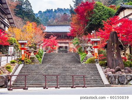 Kurama Temple in Kyoto in autumn 60150839