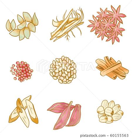 Chinese medicine, herbal medicine material illustration 01 60155563