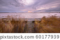 Pier with waving reeds 60177939