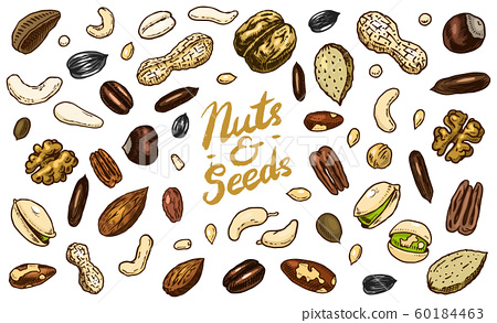 Nuts mix background. Seeds and granule, corn and grain. Hazelnut, Walnut, Almonds. Food concept. Top 60184463