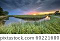 Wide angle landscape 60221680