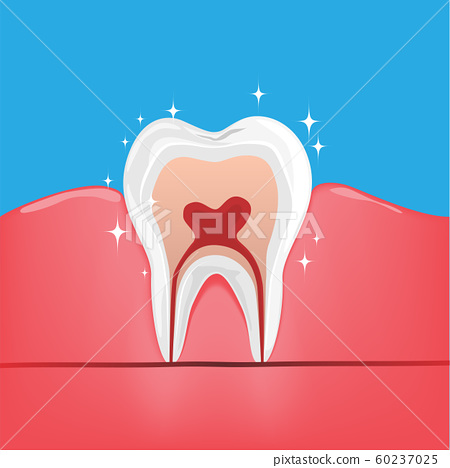 Healthy Teeth on Healthy Gum on iSolated Blue Background. 60237025