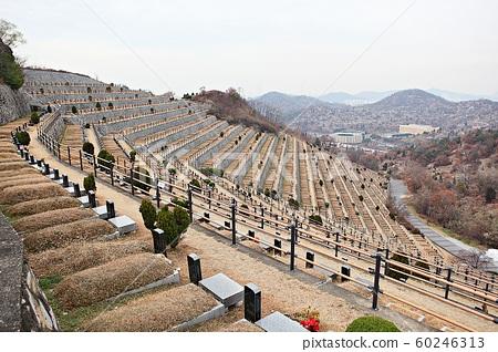 인천시립공설묘지 60246313