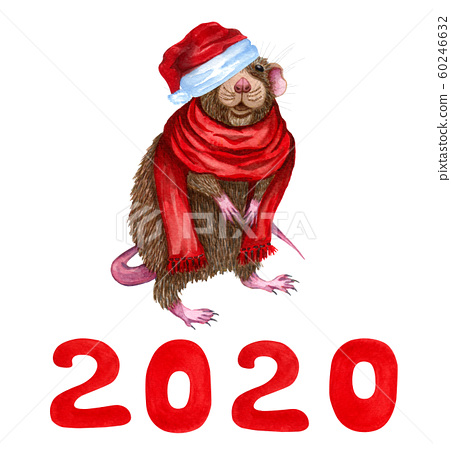 Cartoon Little Mouse in a red scarf and red christmas hat with number 2020. Cute cartoon christmas animal rat or mouse. Watercolor illustration. Christmas and New Year card. Hand drawn illustration. 60246632