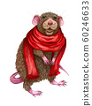 Cartoon Little Mouse in a red scarf. Cute cartoon christmas rat or mouse. Watercolor illustration. Christmas and New Year card. Hand drawn illustration. 60246633