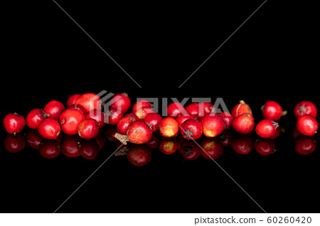 Wild red rowanberry isolated on black glass 60260420
