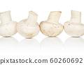 Fresh white mushroom isolated on white 60260692