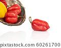 Hot chili habanero isolated on white 60261700