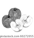 Apple wisteria honey watercolor illustration monotone 60272055