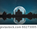 Taj Mahal at night 60273005
