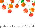 과일 체리 콜라주 60273658