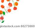 과일 체리 콜라주 60273660