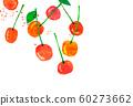 과일 체리 콜라주 60273662