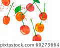 과일 체리 콜라주 60273664