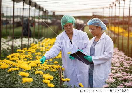 Two Scientist women with head cap and gloves holding lab sheet of flower and researching experiment