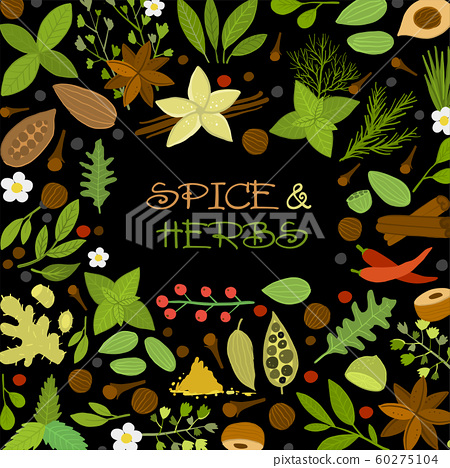 Herbs and spices background, seamless pattern for your design 60275104
