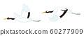 飛丹頂鶴,新年的材料剪貼畫 60277909