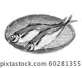 ア ジ horse mackerel maji monkey watercolor monotone 60281355