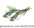 ア ジ horse mackerel maji hiba watercolor 60281358
