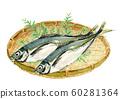 Horse mackerel maji monkey watercolor 60281364