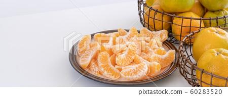 橘農業新年白底當代橘子白色背景橘橘 60283520