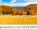 Beautiful landscape of the forest on the mountain at Onuma Pond with colorful foliage of autumn season and the blue sky at Onuma Pond Walking Trail in Towada Hachimantai National Park,Akita Prefecture 60285884