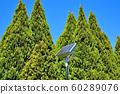 森林太陽能電池板 60289076