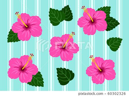 Hibiscus Pink & Light Blue Vector Border 60302326