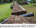 The old large caliber cannon at the Cornwallis fortress. 60318407