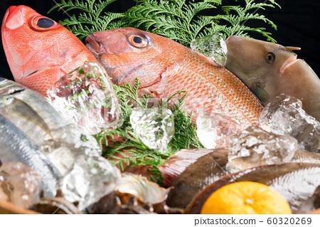 Assorted fresh fish 60320269