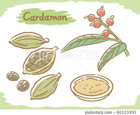 Cardamom (spices) material 60323991