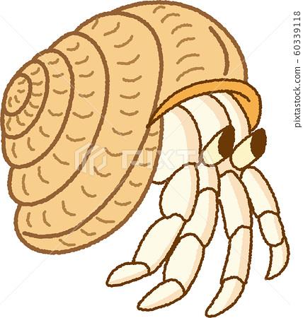寄居蟹寄居蟹手繪風格簡單可愛寵物插圖 60339118