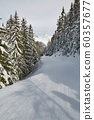 Skiing slopes between snowy trees 60357677