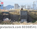 Ruins of the Mairigawa Bridge that collapsed in the Great Kanto Earthquake 60368541