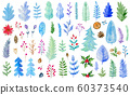 Watercolor winter evergreen plants 60373540