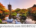 Ancient wooden pagoda Toji temple in autumn garden, Kyoto, Japan. 60380532