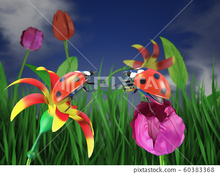 Two ladybugs on flowers. 60383368