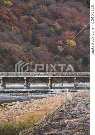 Togetsu-kyo Bridge in autumn 60401519