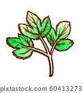 Parsley Sprig Fresh Spice For Nutrition Ink Vector 60413273