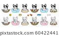 dog vector french bulldog bone puppy pet toy box basket pillow icon cartoon character symbol breed illustration doodle design 60422441