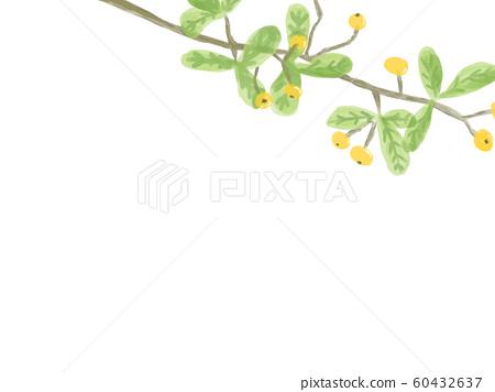 노란 낙상 홍 흰색 배경 대각선 60432637